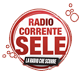 RadioCorrenteSele.it Logo
